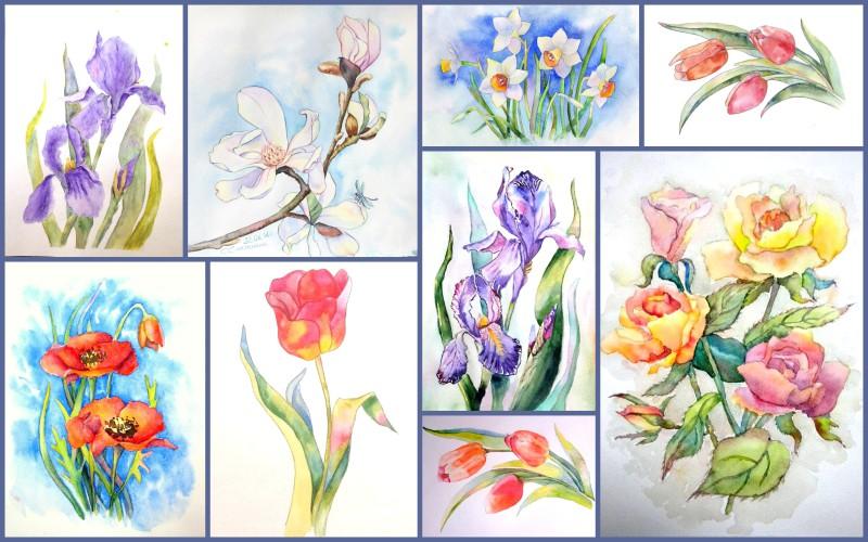 Уроки рисования акварелью для начинающих поэтапно цветы